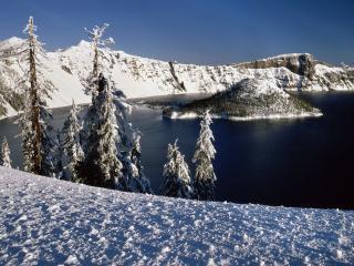 обои Островок в озере фото