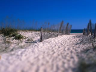 обои Дорога к пляжу фото
