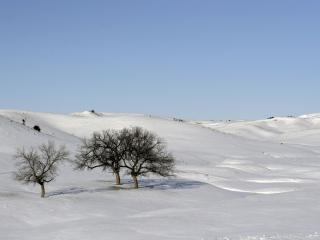 обои Снежная пустыня фото
