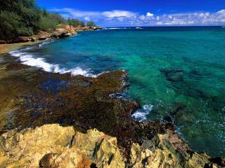 обои Mahaleupu Beach, Poipu, Kauai, Hawaii фото