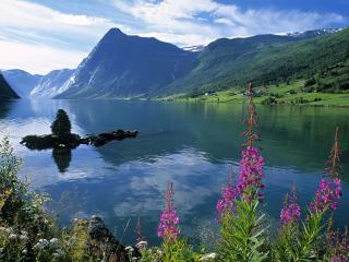 обои Jolstravatnet Fjord, Jolster Area, Norway фото