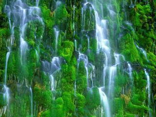 обои Mossbrae Falls California фото