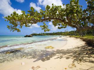 обои Playa Rincon Dominican Republic фото
