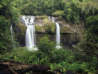 обои для рабочего стола: Tchupalla Falls Palmerston National Park Queensland Australia