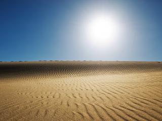 обои Пустынный зной фото