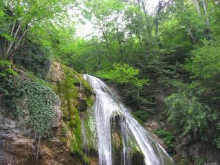 обои Водопад среди зелени фото