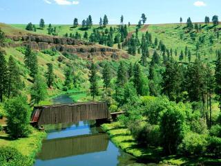 обои Деревянный мост через ручей фото