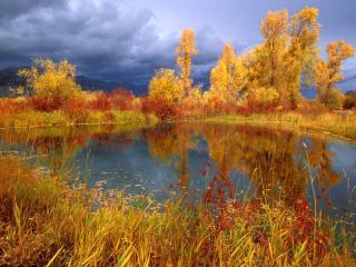 обои Осенний пруд под грозовым небом фото