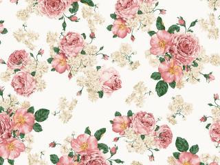 обои Цветочные узоры - розы фото