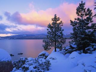 обои Colors of Winter, Lake Tahoe фото