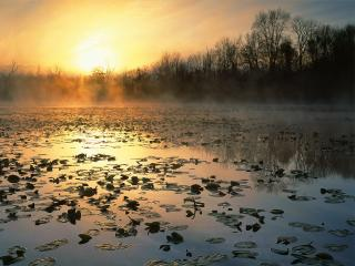обои Cuyahoga Valley National Recreation Area at Sunrise фото