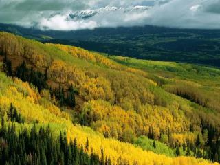 обои Осенний склон фото