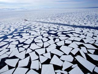 обои Ледокол плывет между льдин фото