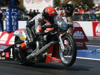 обои Harley Davidson - drag bike фото