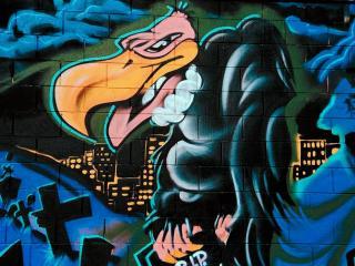 обои Графити ворона фото