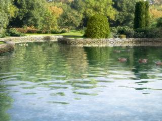обои Вид на озеро фото