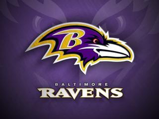 обои для рабочего стола: Baltimore ravens
