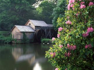 обои Дом у реки фото