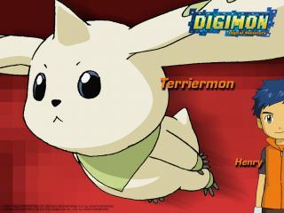 обои Digimon фото