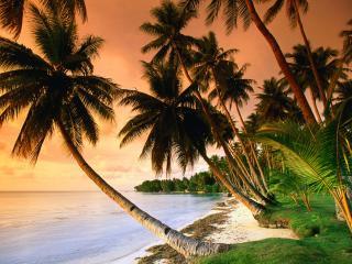 обои Blue Lagoon Resort Beach, Micronesia фото