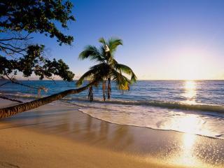 обои Silhouette Island фото