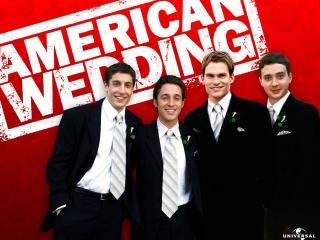 обои American Wedding фото