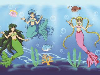 обои Mermaid Melody Pichi Pichi Pitch фото
