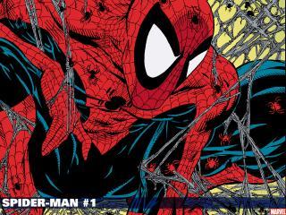 обои Spiderman - мульт фото