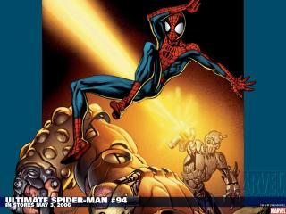 обои Spiderman фото