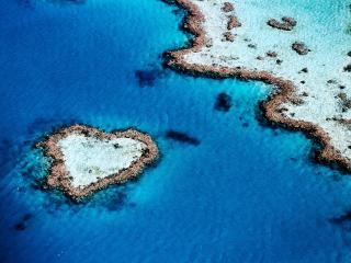 обои Aerial of Heart-Shaped Reef фото