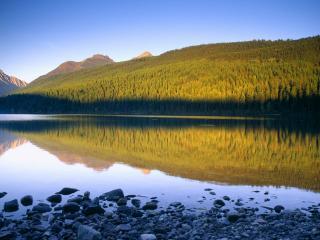 обои Mirror Lake Reflection, Kintla Lake, Montana фото