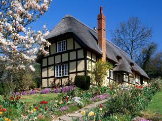 обои Весна в Англии фото
