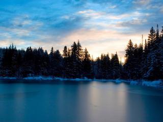 обои Озеро среди тайги фото