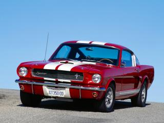 обои 1966 Ford Mustang Shelby GT 350 фото