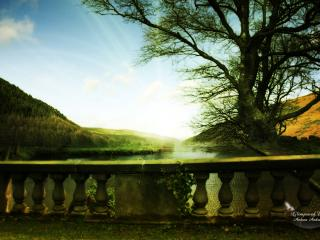 обои Вид на реку фото