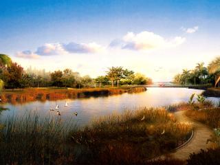 обои Река, природа фото