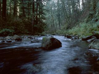 обои Река и большой камень фото