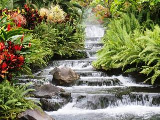 обои Каскадный водопад, окаймленный цветами фото