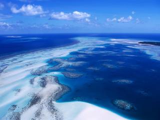 обои Кораловый риф фото