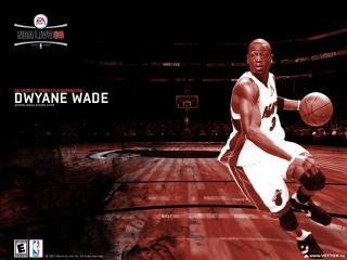 обои Dwayne Wade фото