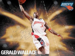 обои Gerald Wallace фото