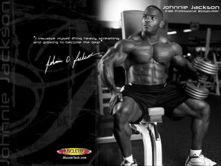 обои Johnnie Otis Jackson, IFBB Professional Bodybuilder фото