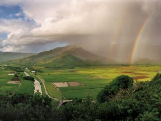 обои Радуга на Гавайях фото