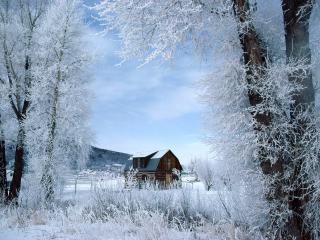 обои Дом около леса зимой фото