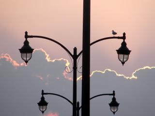 обои Фонарный столб под розовым небом фото