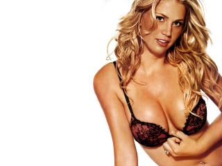 обои Willa Ford фото