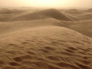 обои Ветер в пустыне фото