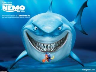 обои На обед к акуле фото