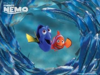 обои Рыбы вокруг фото