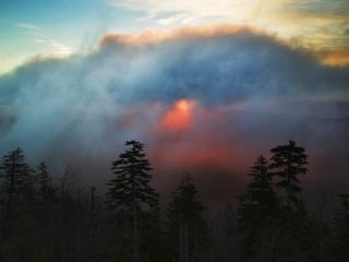 обои Foggy Sunrise From Clingmans Dome, Great Smoky Mountains фото